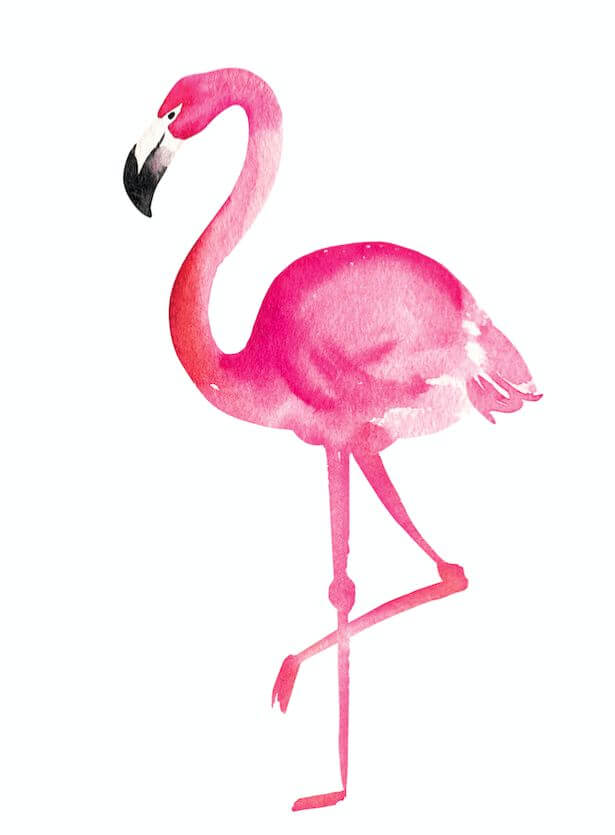 фламинго рисунок легкие