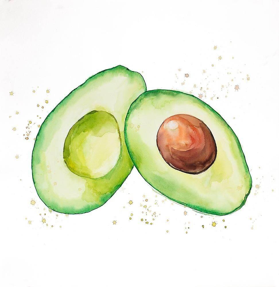 авокадо рисунок карандашом для срисовки