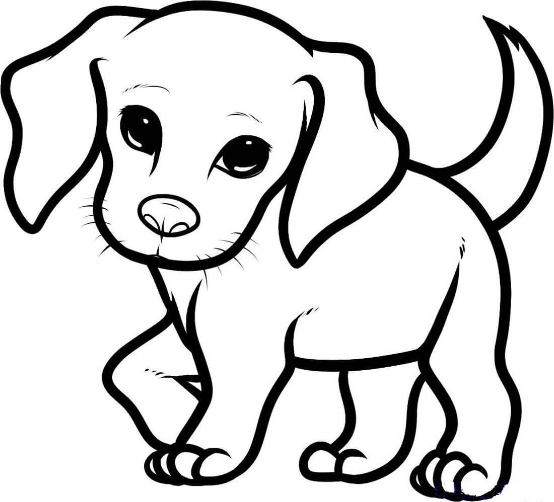 красивые рисунки собак для срисовки