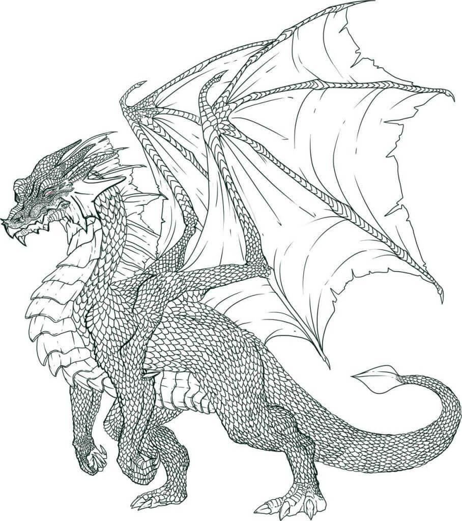 картинки драконов красивые для срисовки