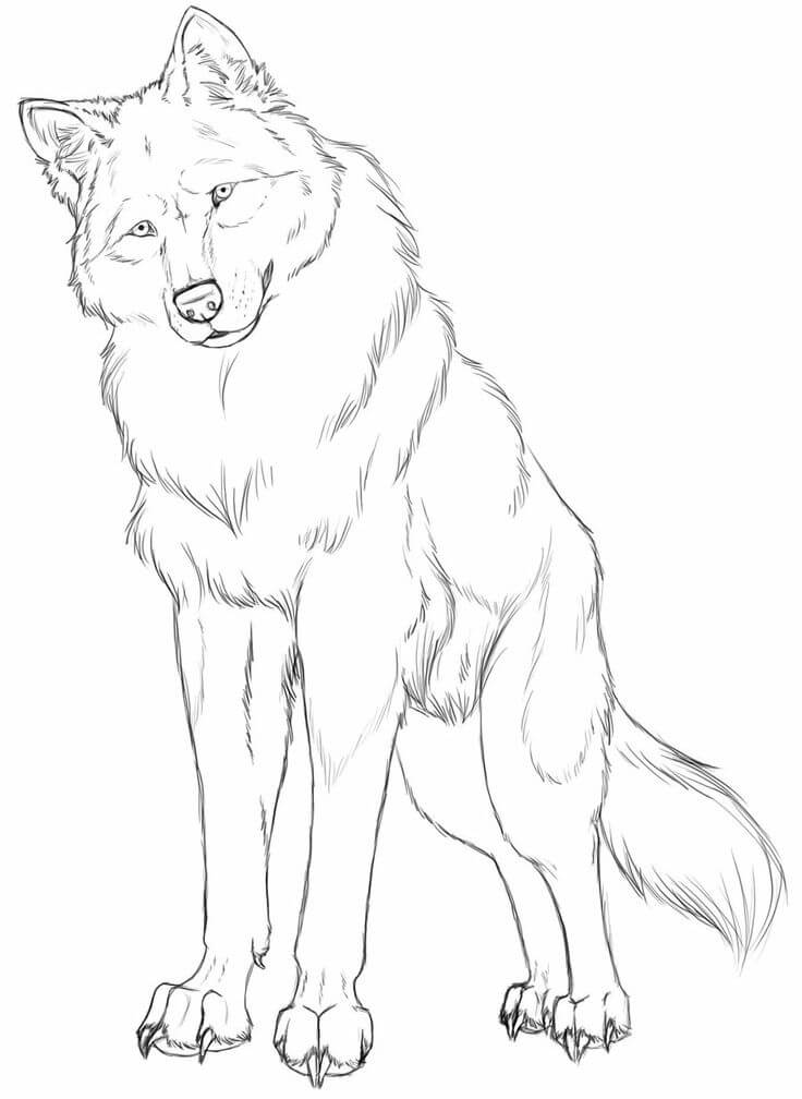 рисунки волка для срисовки легкие и красивые