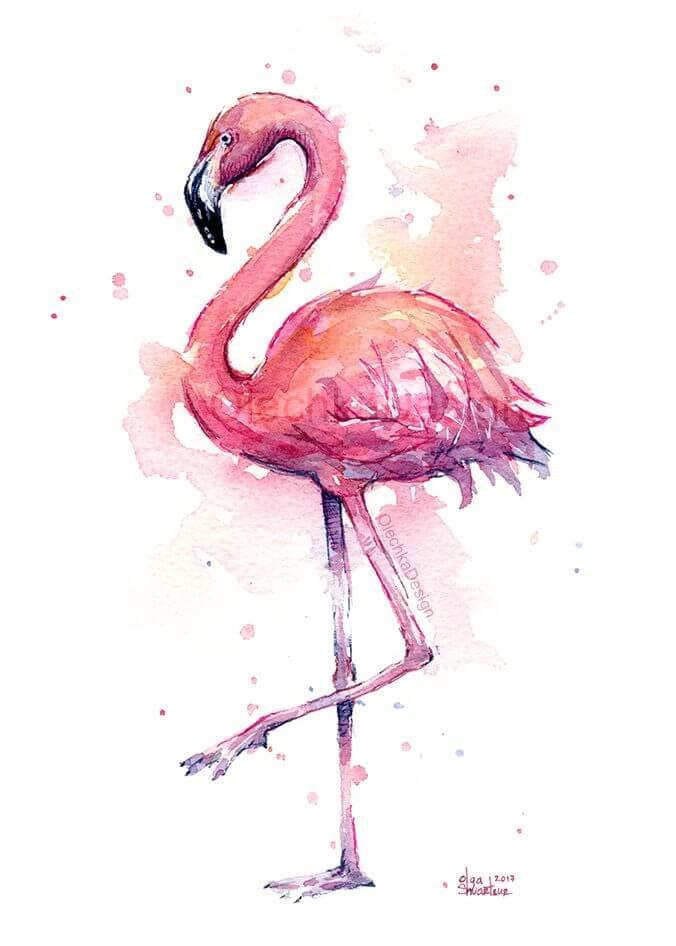 фламинго для срисовки нарисовать