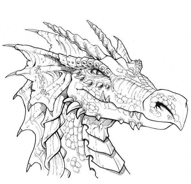 арты драконов для срисовки
