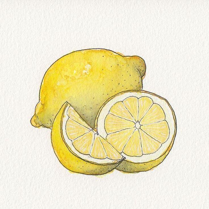 рисунки для срисовки милые фрукты