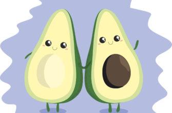 картинки для срисовки легкие авокадо