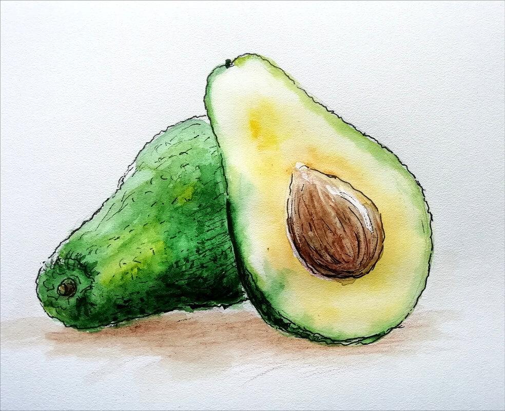 срисовки авокадо легкие
