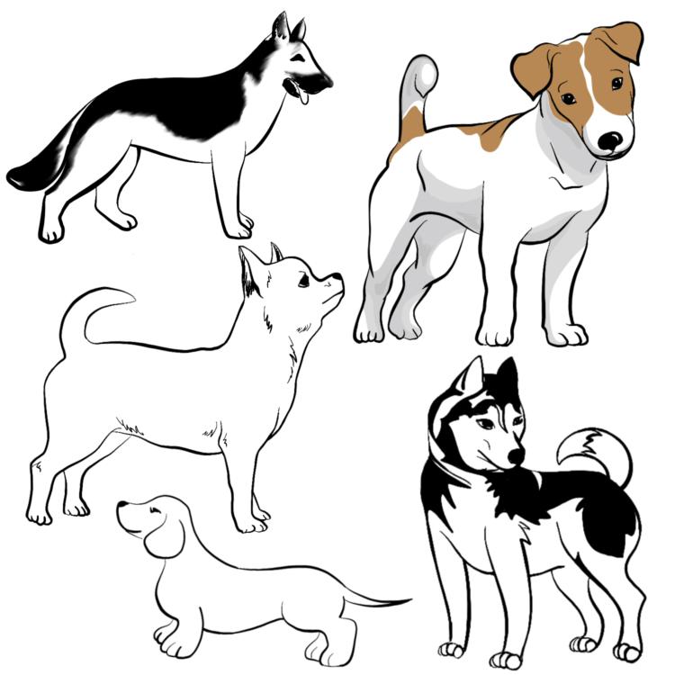 картинки щенков для срисовки