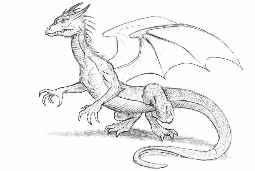 картинки для срисовки милые дракончики
