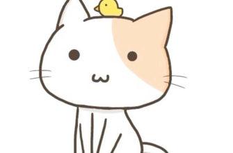 рисунки для срисовки котики няшки