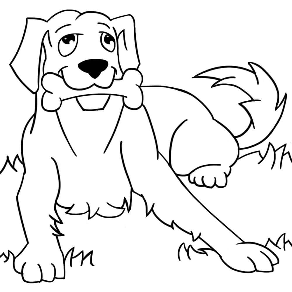 собаки для срисовки легкие