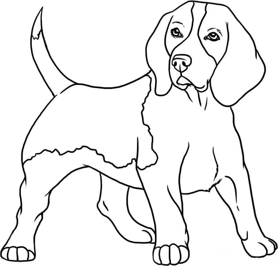 рисунок собаки для срисовки легкие