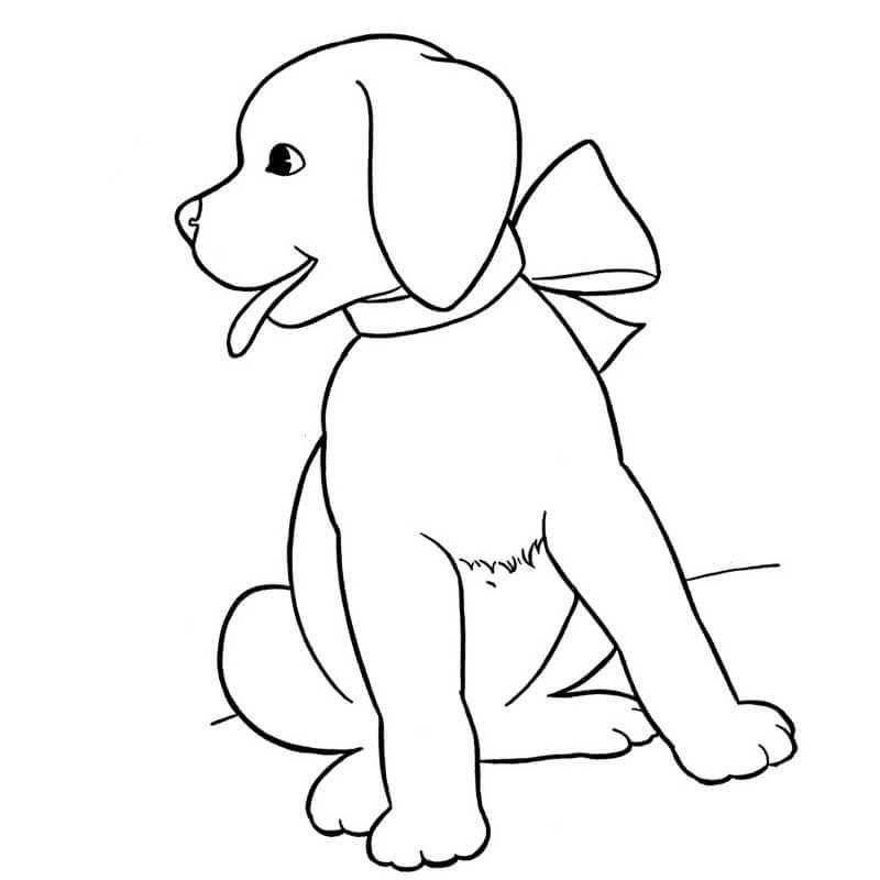 картинки для срисовки собачки
