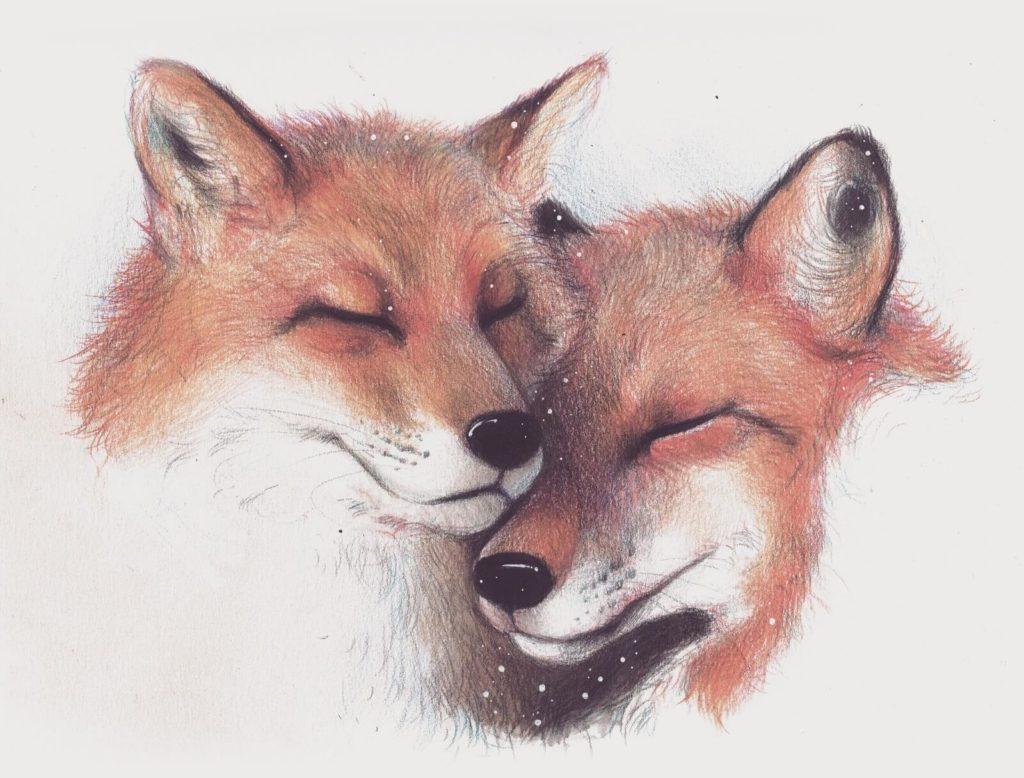 картинки для срисовки лиса