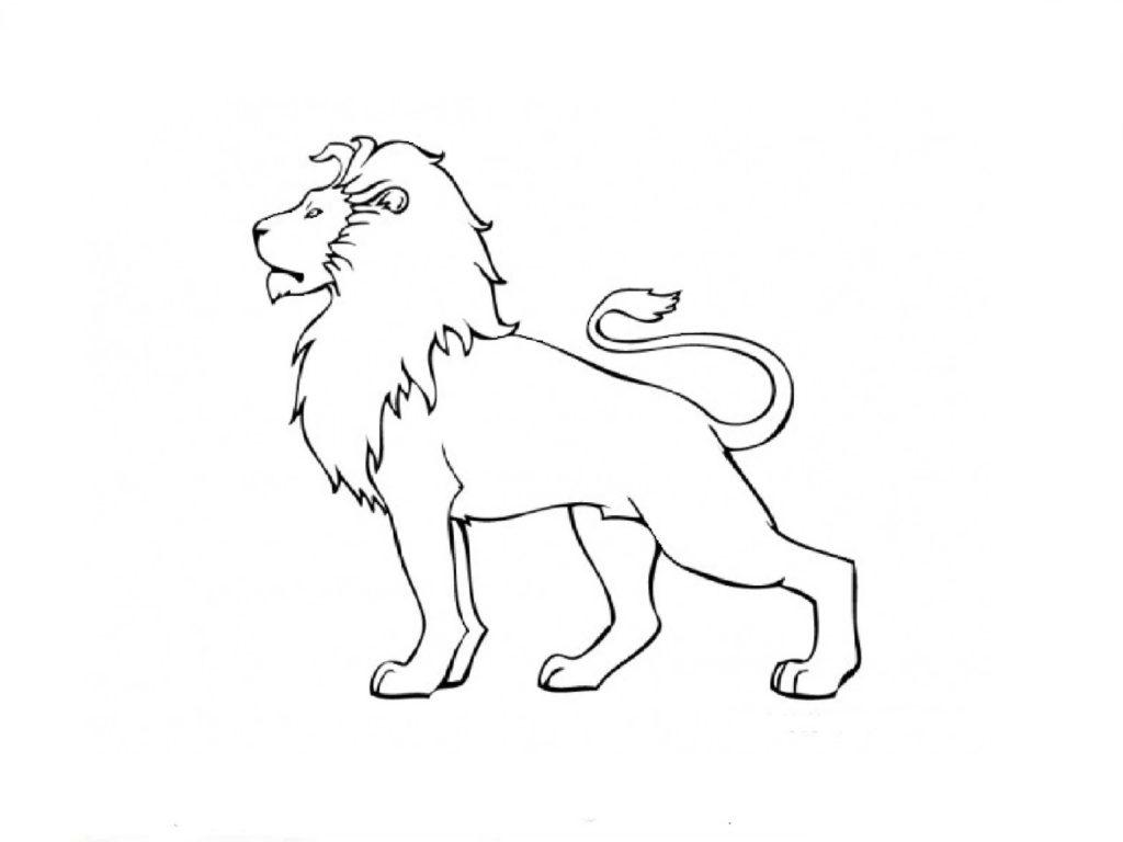 картинки львов для срисовки