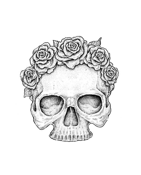 череп для срисовки легкие с розой