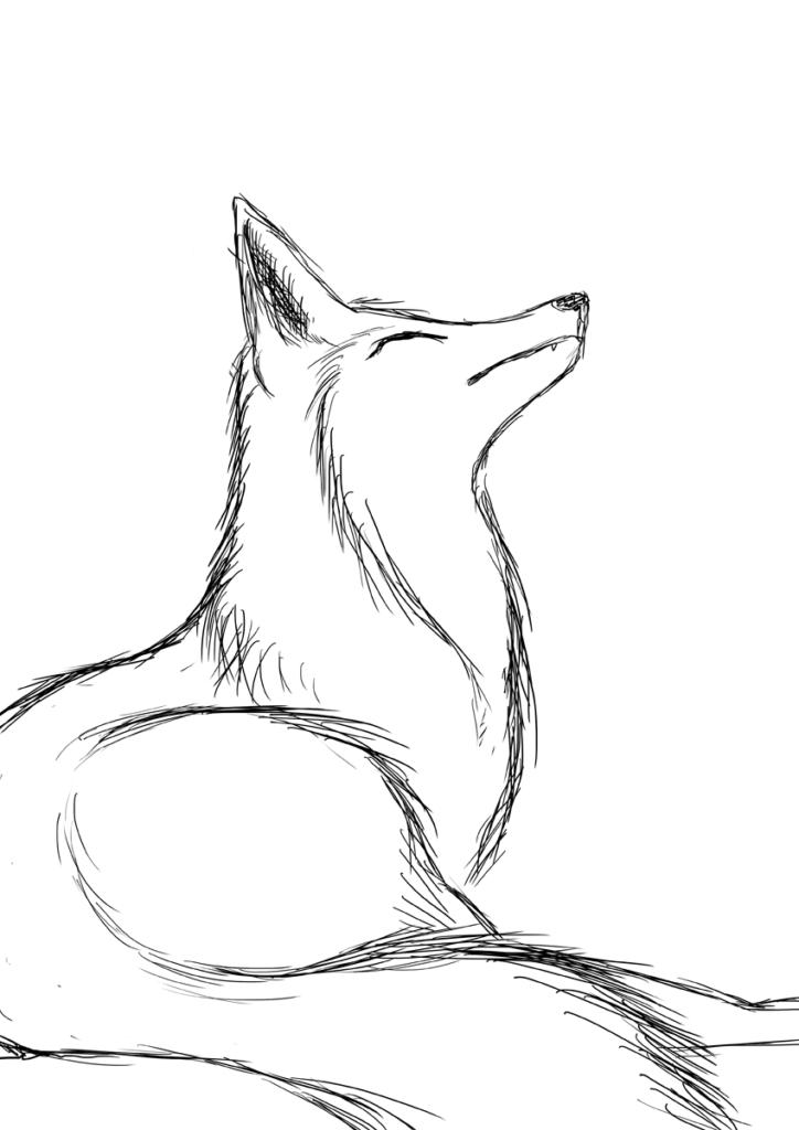 рисунки для срисовки легкие лиса