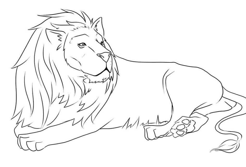 рисунки льва для срисовки