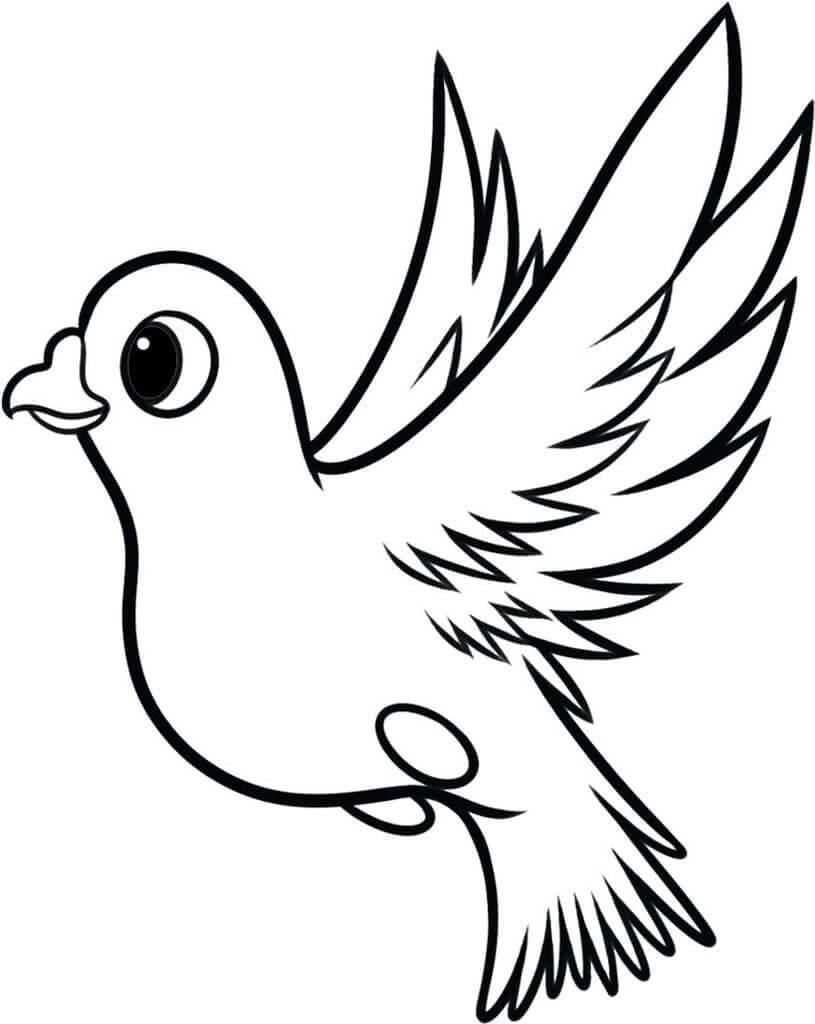 рисунки птиц для срисовки легкие и красивые