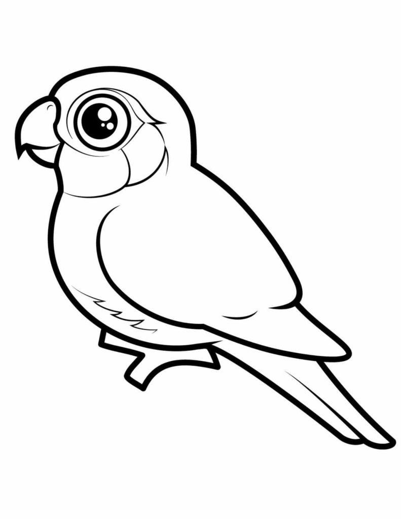 рисунки птиц для срисовки мультяшная