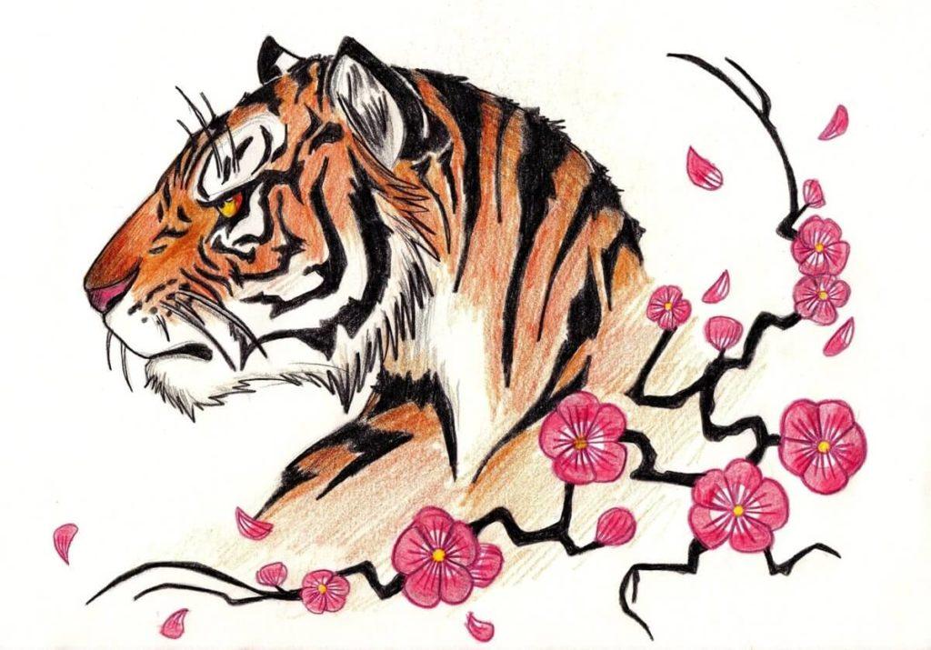 тигр для срисовки