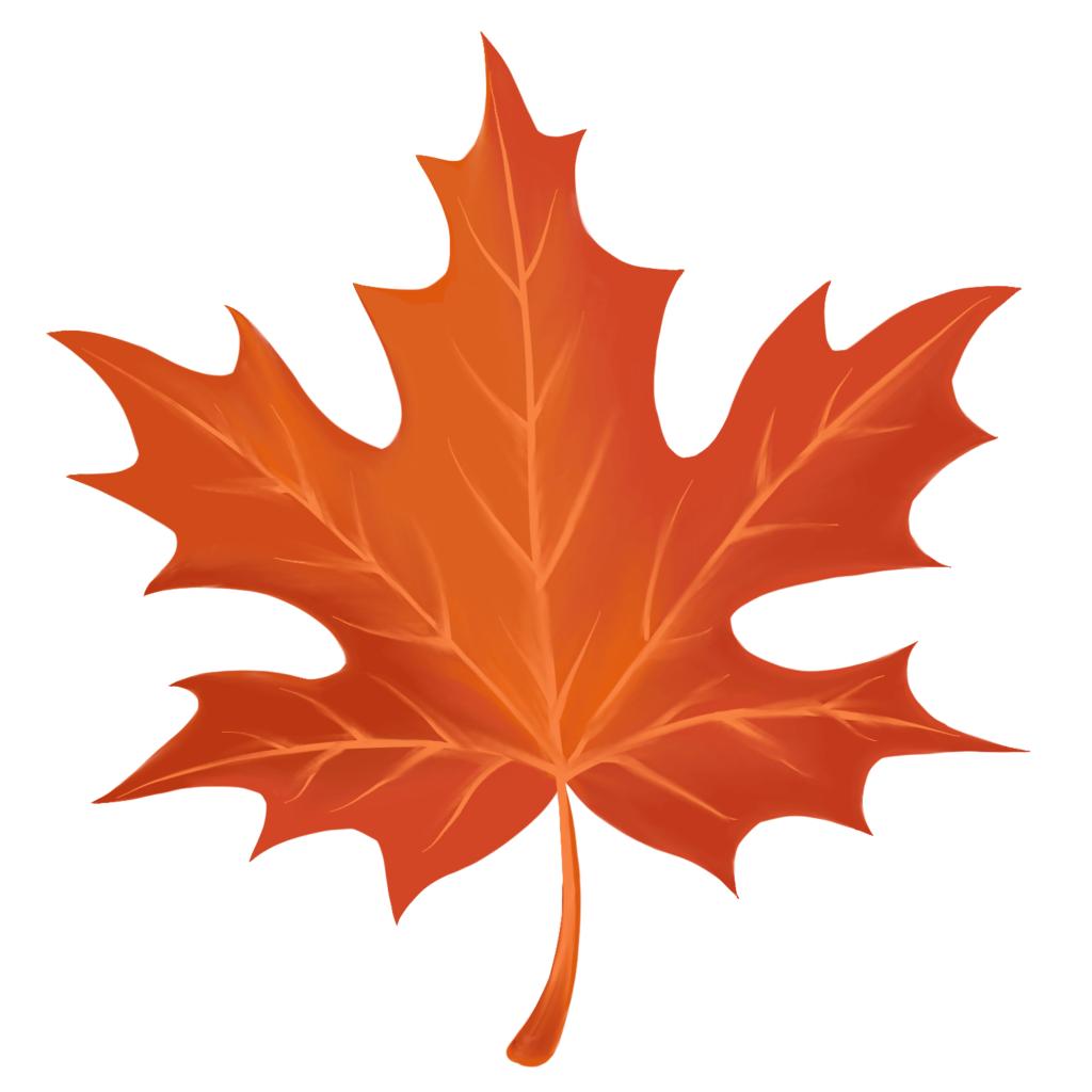 красивые листья для срисовки