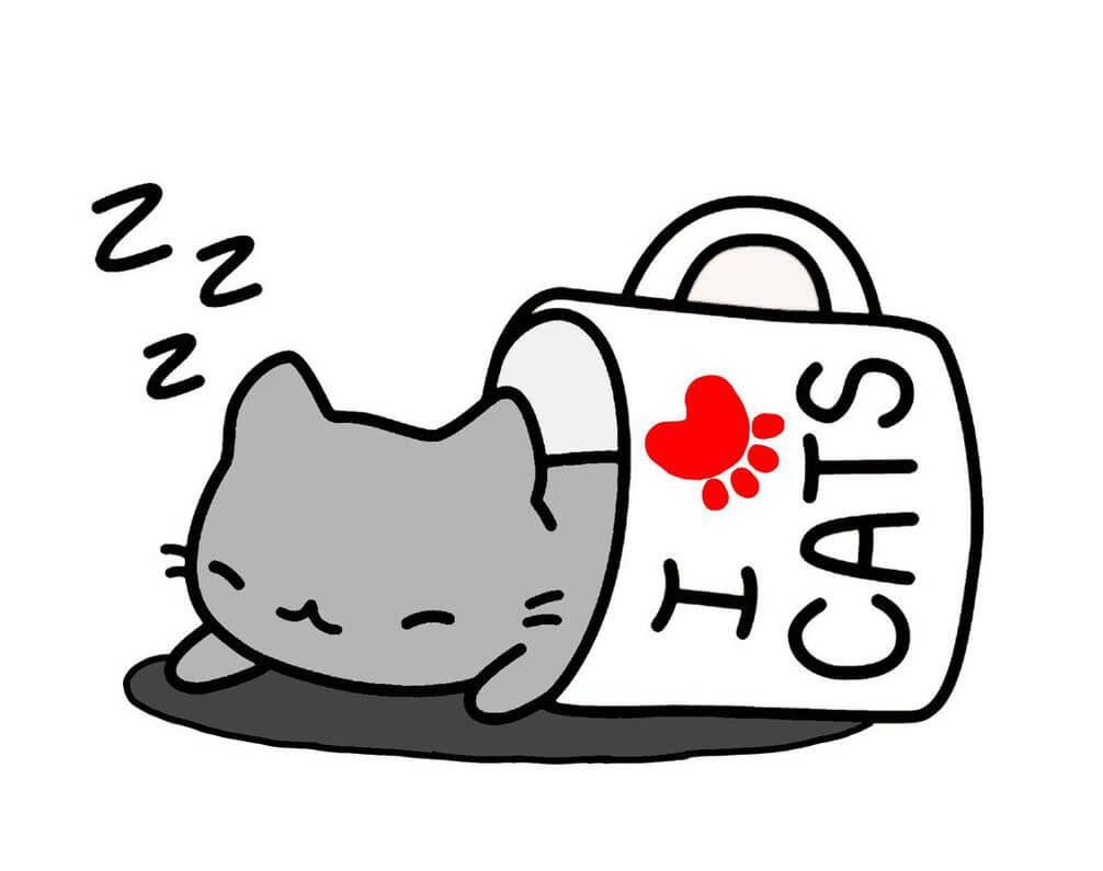 мордочка кошки для срисовки в кружке