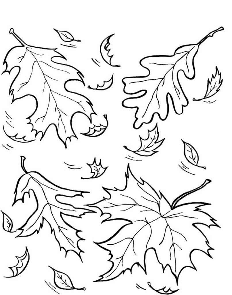 рисунки для срисовки листья