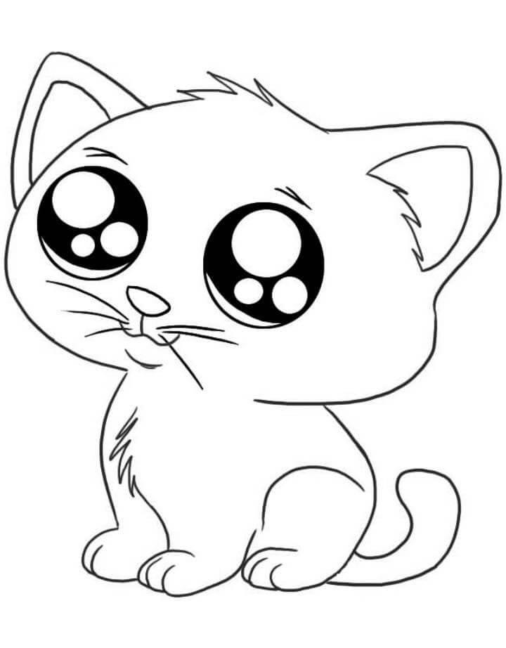 милые котята рисунки для срисовки маленький