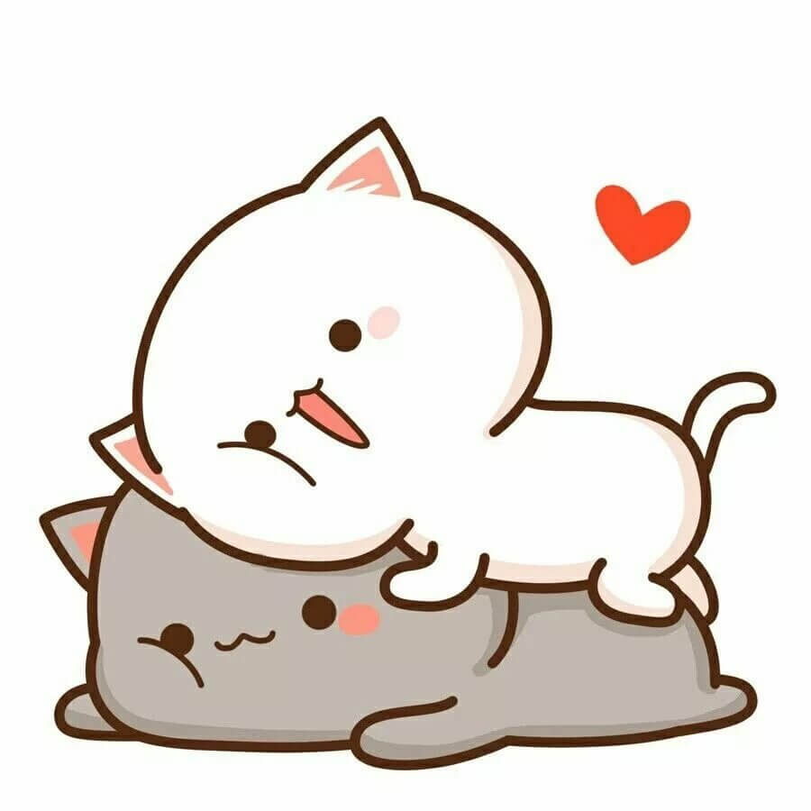 мордочка кошки для срисовки два