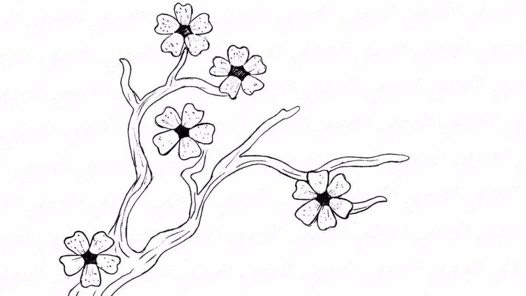 картинки для срисовки дерево сакура