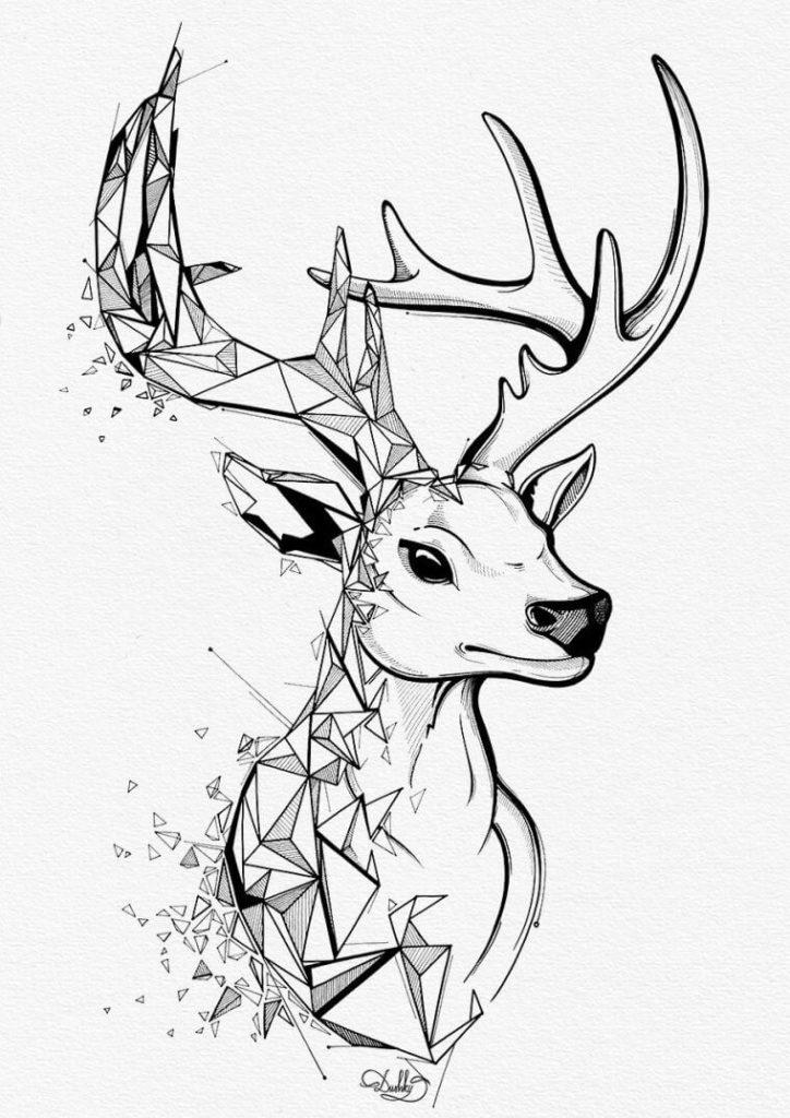 рисунки оленя для срисовки