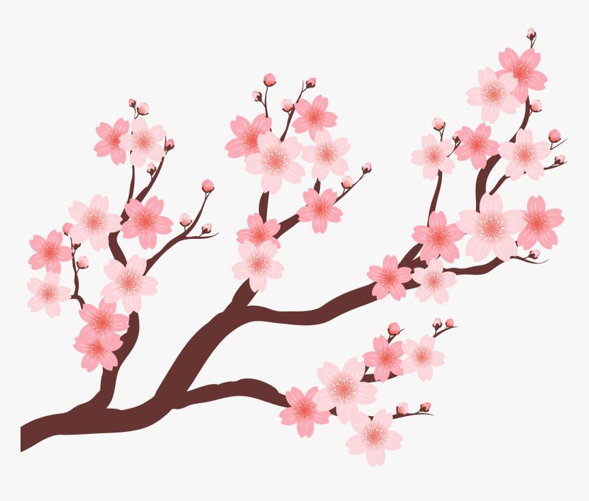 рисунок сакуры для срисовки