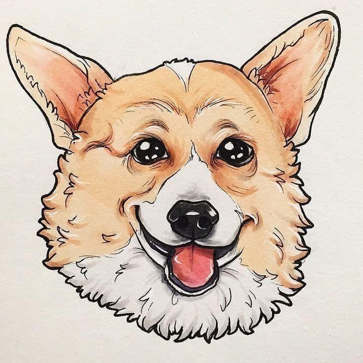 рисунки корги для срисовки портрет