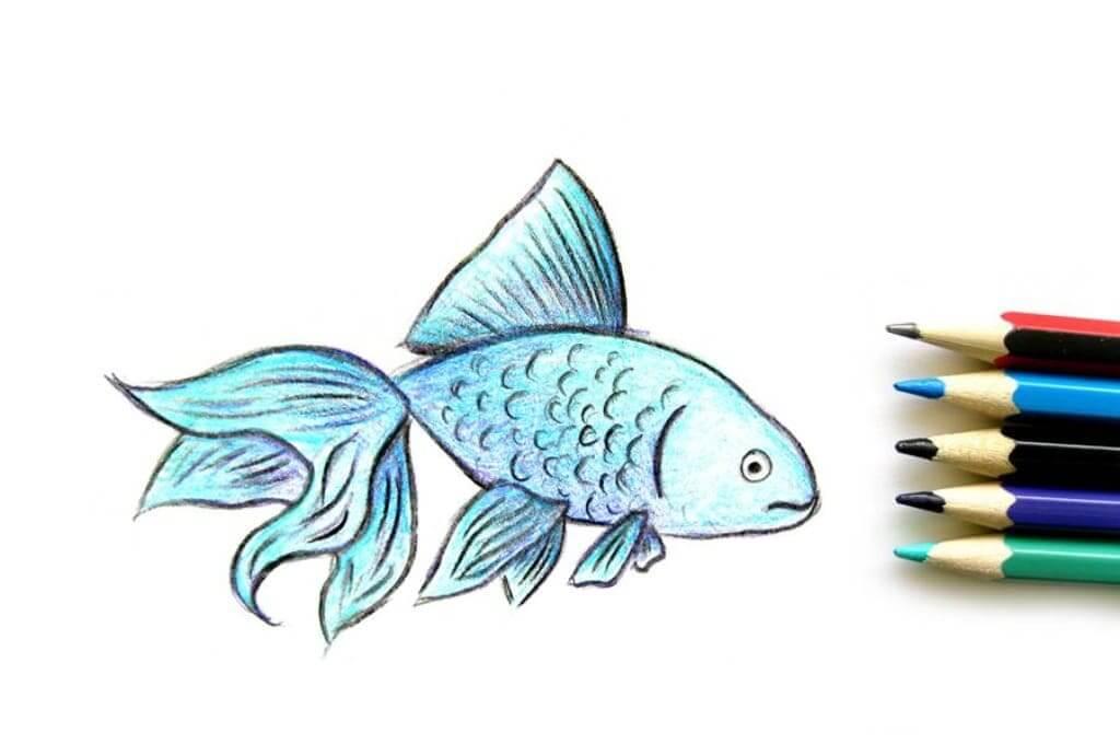 картинки для срисовки рыбы цветные