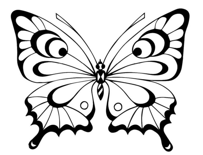 картинки для срисовки бабочки красивая