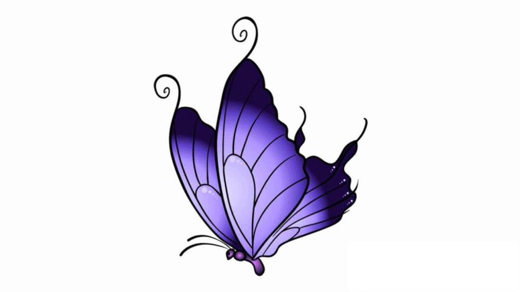 картинки для срисовки бабочки синяя