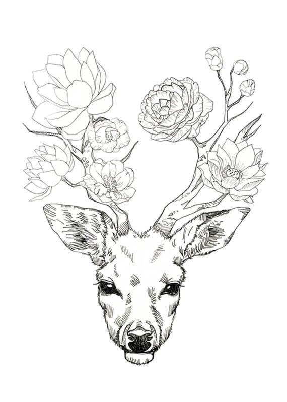 олень для срисовки с цветами