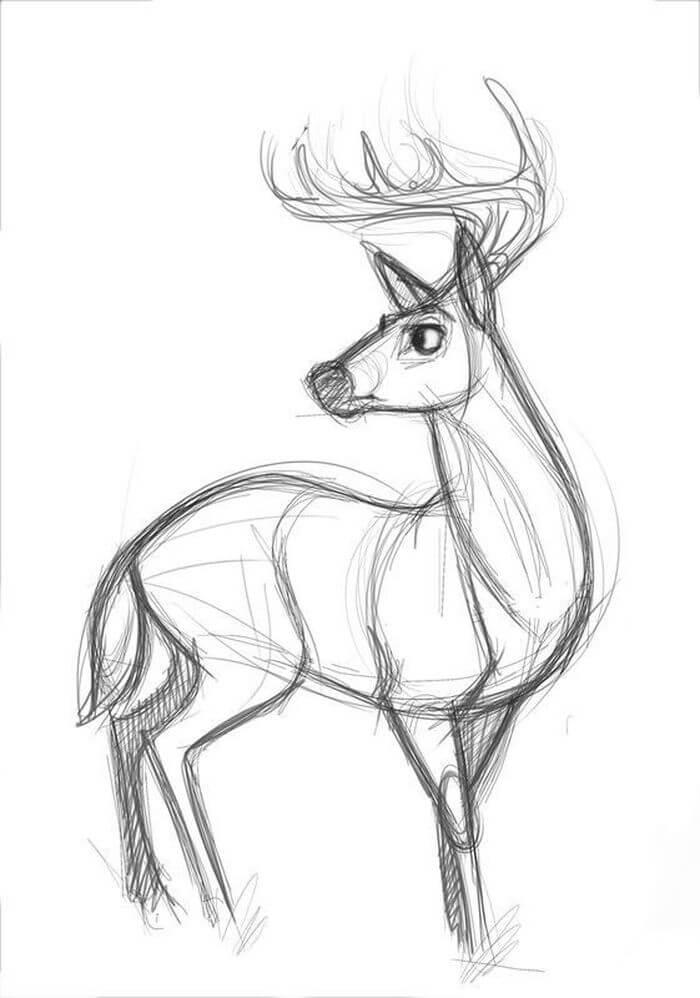 рисунки оленя для срисовки красивые