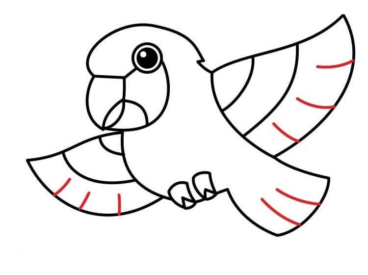 картинки для срисовки попугай мультяшные