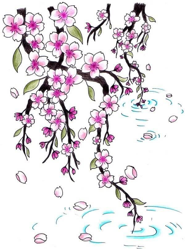 картинки сакуры для срисовки