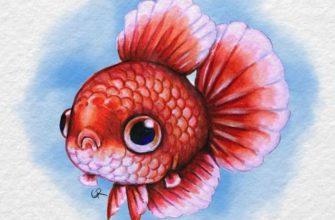 картинки для срисовки рыбы золотая