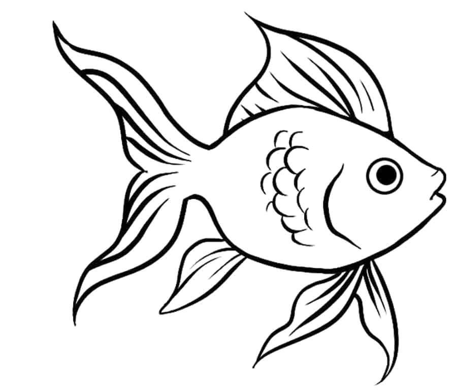 рыбки для срисовки легкие