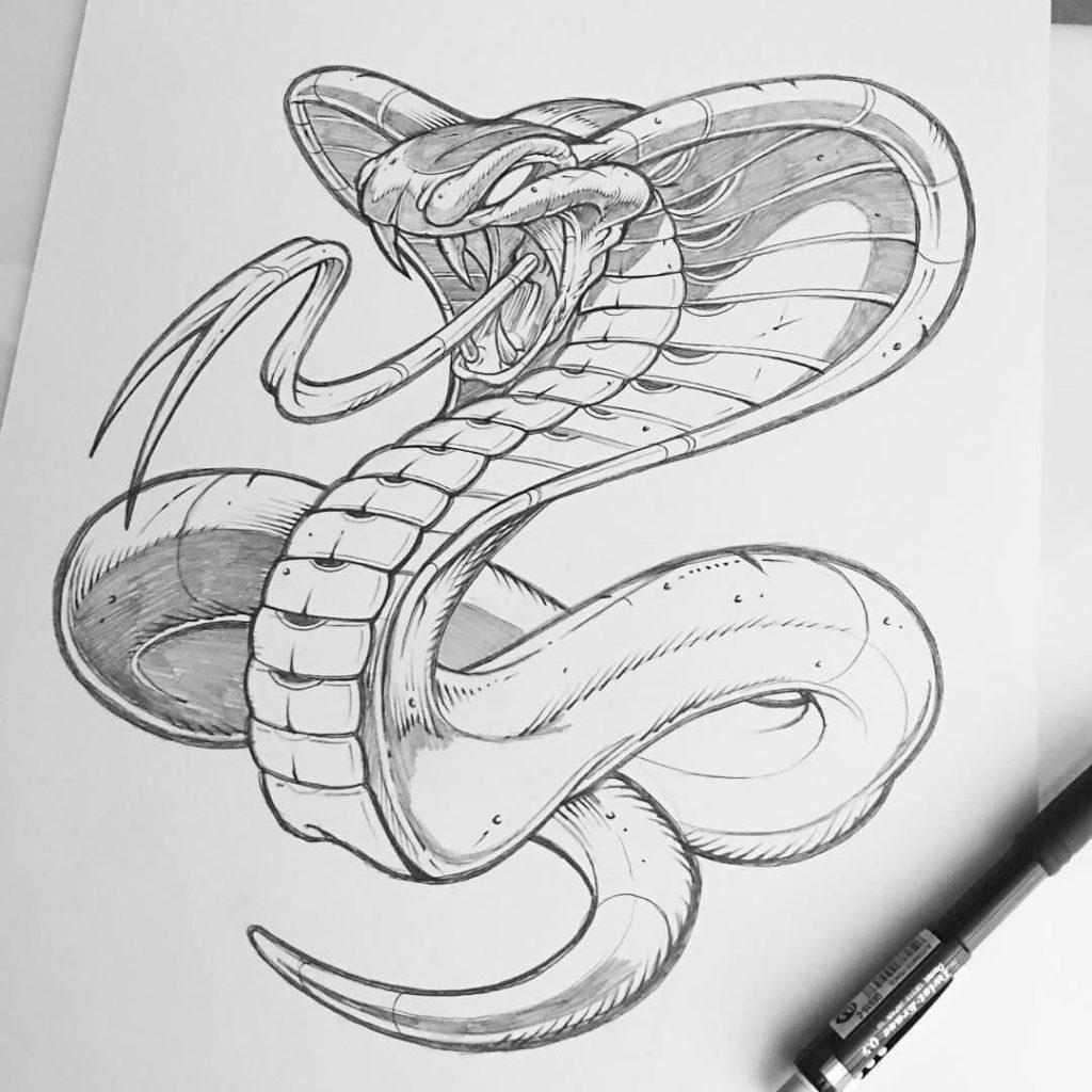 срисовка змеи простым карандашом