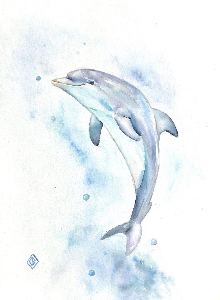 картинки дельфинов для срисовки