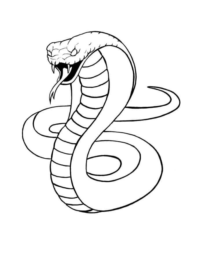 рисунки для срисовки змеи