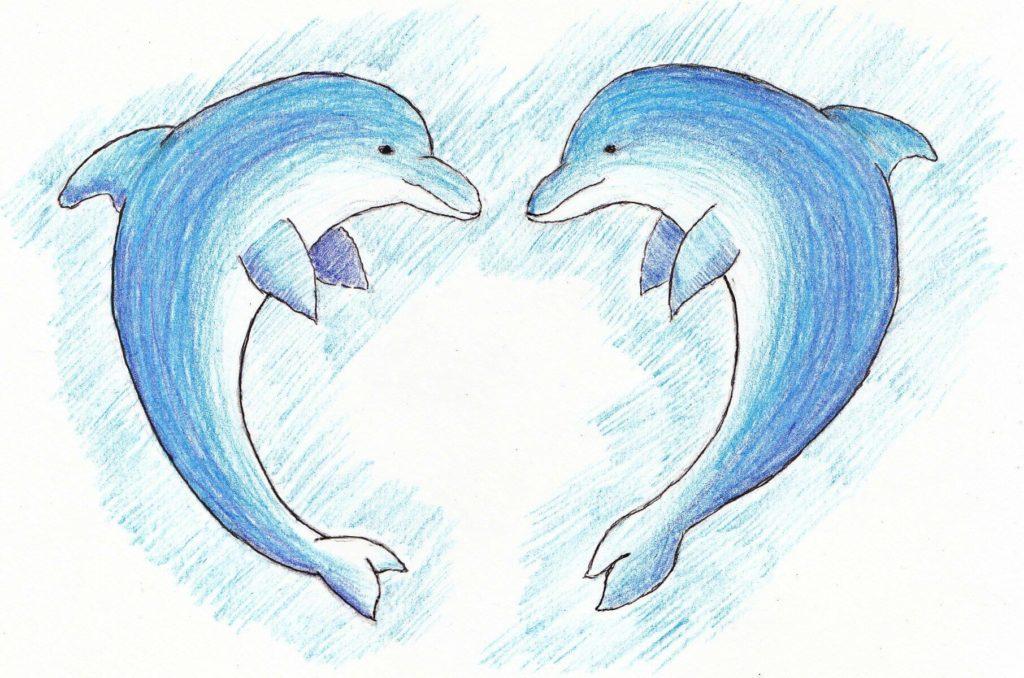 рисунок дельфина для срисовки