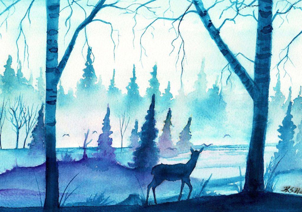 рисунки для срисовки лес цветные