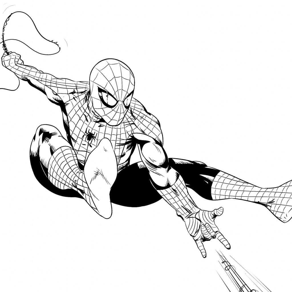 человек паук для срисовки простые