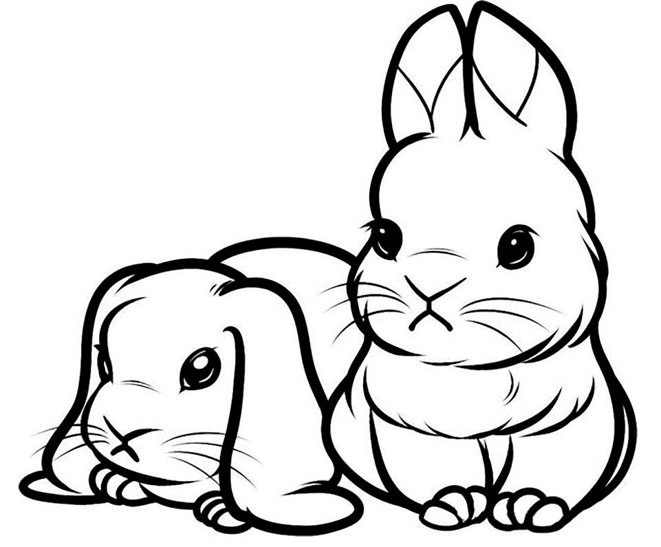 рисунок кролика для срисовки