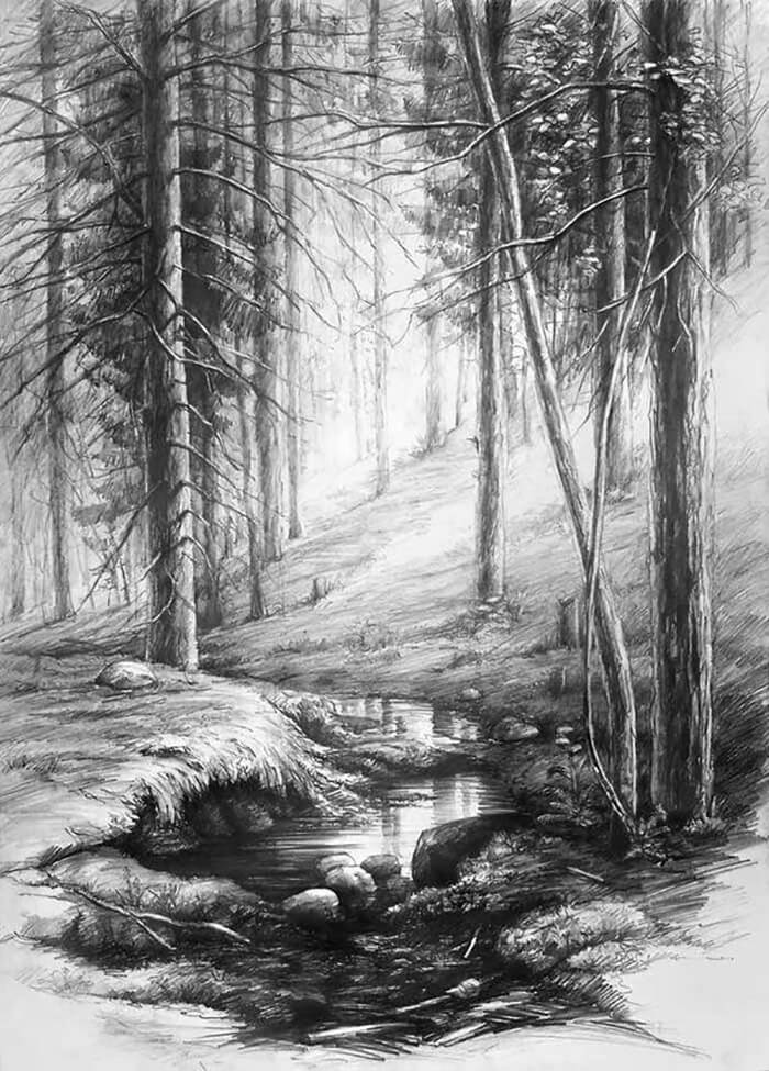 рисунки леса для срисовки легкие и красивые карандашом